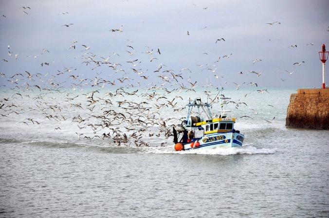 fishing-boat-980979_1280