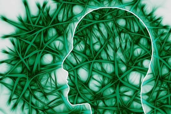neural-pathways-221718_1920